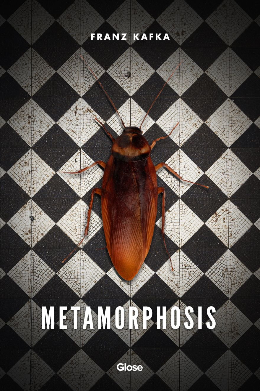 themes in kafkas the metamorphosis The metamorphosis is said to be one of franz kafka's best works of literature it shows the difficulties of living in a modern society and the struggle for acceptance of others when in a time of need.